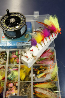 0106 Saltwater Flies 2013 400